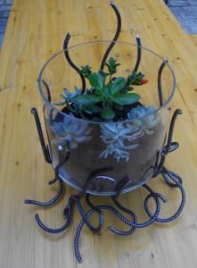 support aquarium en fer avec plantes grasses